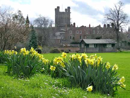 Deanery Field in Spring